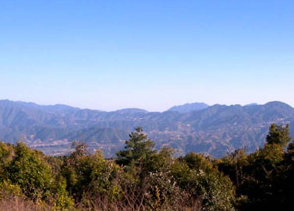 Phulchowki Hill Day Hike