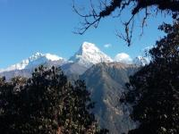 one of the best picture of the Annapurna himalaya Nepal